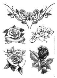 ... di loto margherite ibisco peonie crisantemi e molti altri disegni di